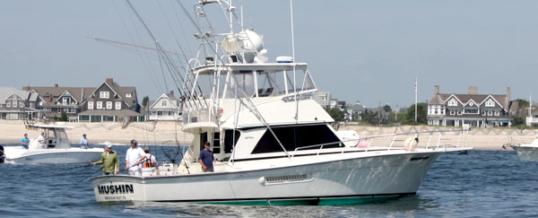 Mushin Sportfishing – 44′ Henriques